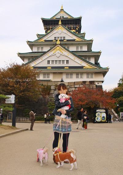 2011_11_27_0422