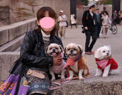 2011_11_27_0384